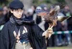 Falconer Satoko Sakakibara gets ready to release a Harris's Hawk during the annual new year falconry demonstration by Suwa Falconry Preservation Society at Hama rikyu Gardens park in Tokyo Tuesday, Jan. 3, 2012. (AP Photo/Koji Sasahara)